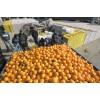 大量批发水晶柑橘武当蜜桔打蜡包装柑橘配货农户自销