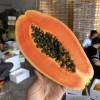 新鲜水果木瓜 广东雷州红心木瓜 新鲜水果木瓜 现摘现发 汁多味甜