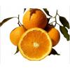发顺丰四川春见耙耙柑橘子 新鲜粑粑柑非不知火丑橘一件代发批发